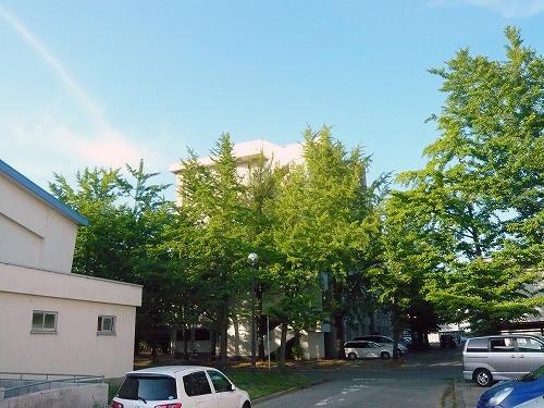 20080615013.jpg